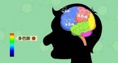让大脑产生最强烈快感的物质……体感音乐